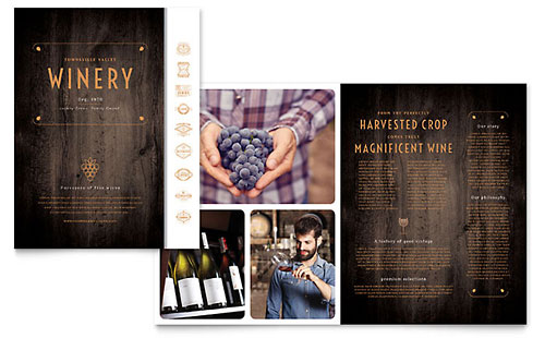 Winery - Brochure Template
