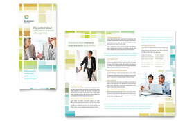 Business Solutions Consultant - Microsoft Publisher Tri Fold Brochure Template